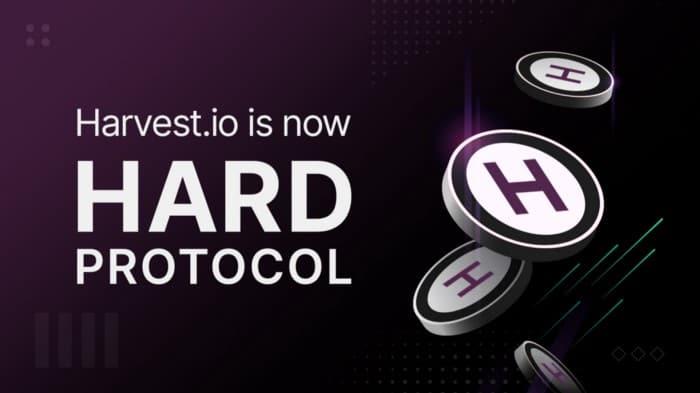 hard protocol token sale