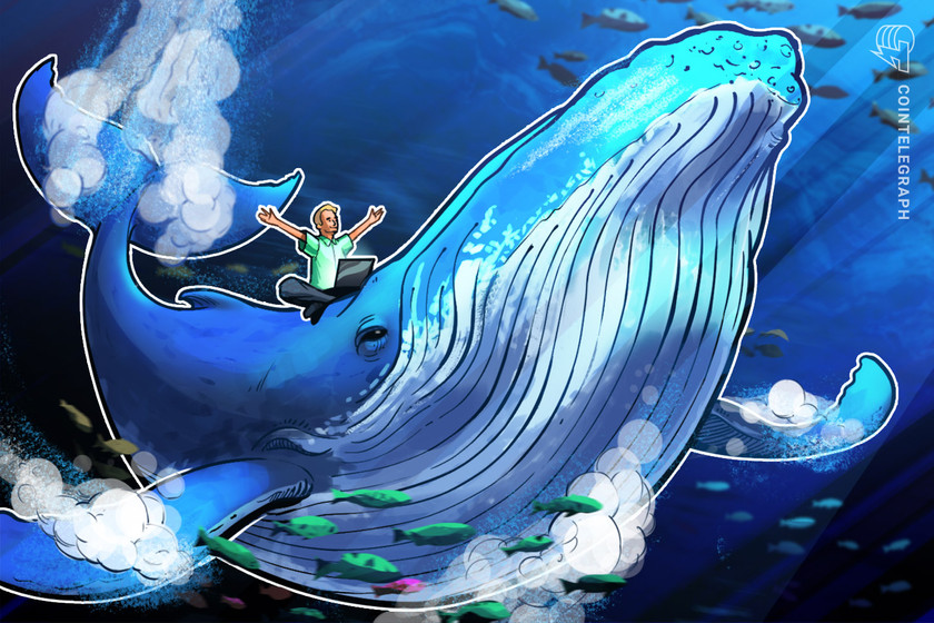 Bitcoin whales are profiting as 'weak hands' sell BTC throughout $40K bull run