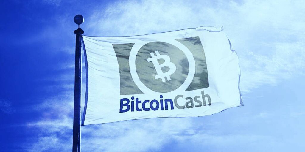 Kim Dotcom 'Officially' Joins the Bitcoin Cash Movement - Decrypt