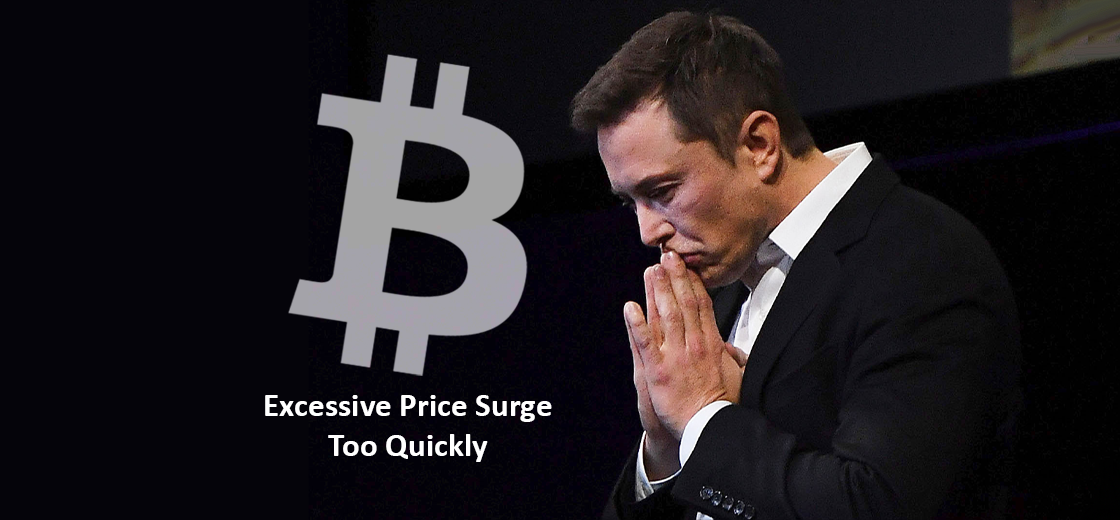 Bitcoin Falls as Elon Musk Hints Excessive Price Surge Too Quickly