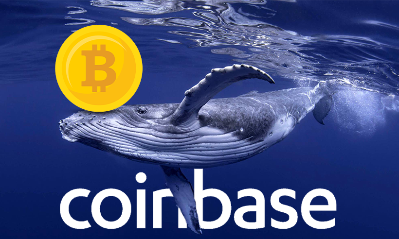 Another Crypto Whale Transacts 3,671 Bitcoin from Exchange
