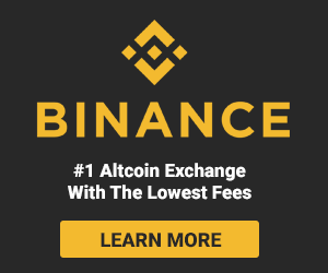 binance-300x250.png
