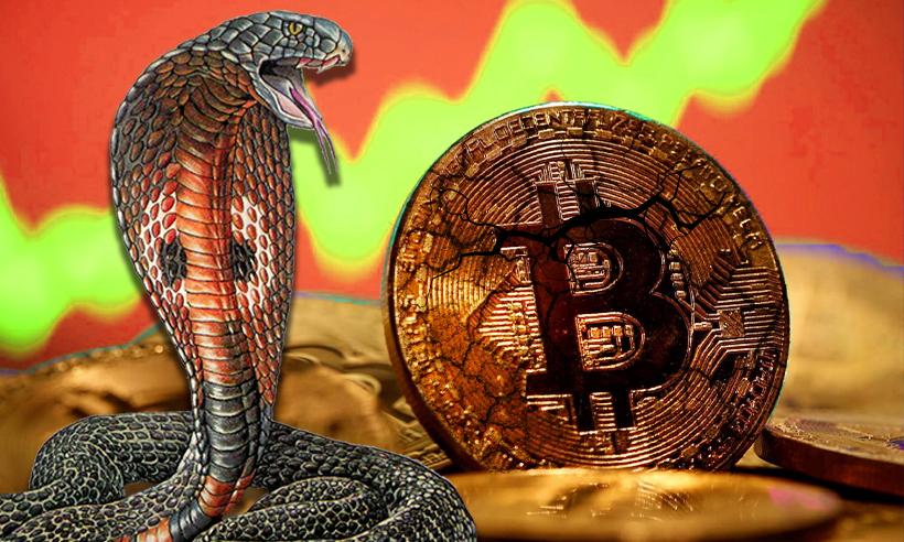 Cobra Crypto Predicts Bitcoin Crash, Claims BTC Could Decline By 20%