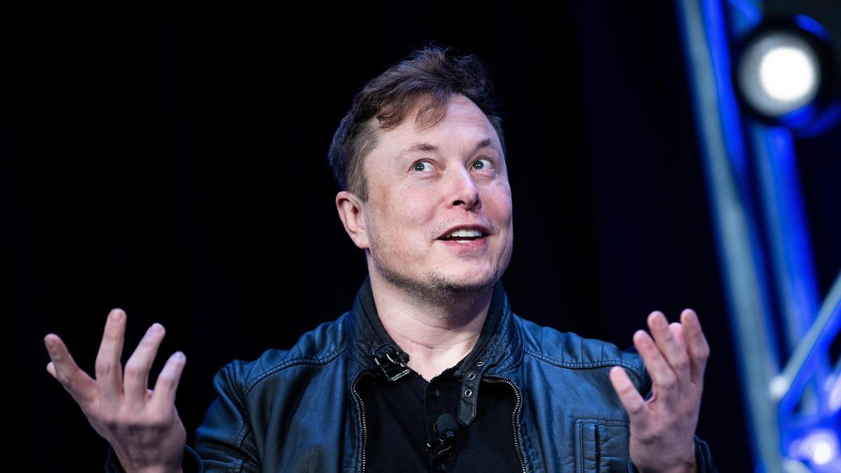 'I Own Bitcoin, Tesla Owns Bitcoin, SpaceX Owns Bitcoin'